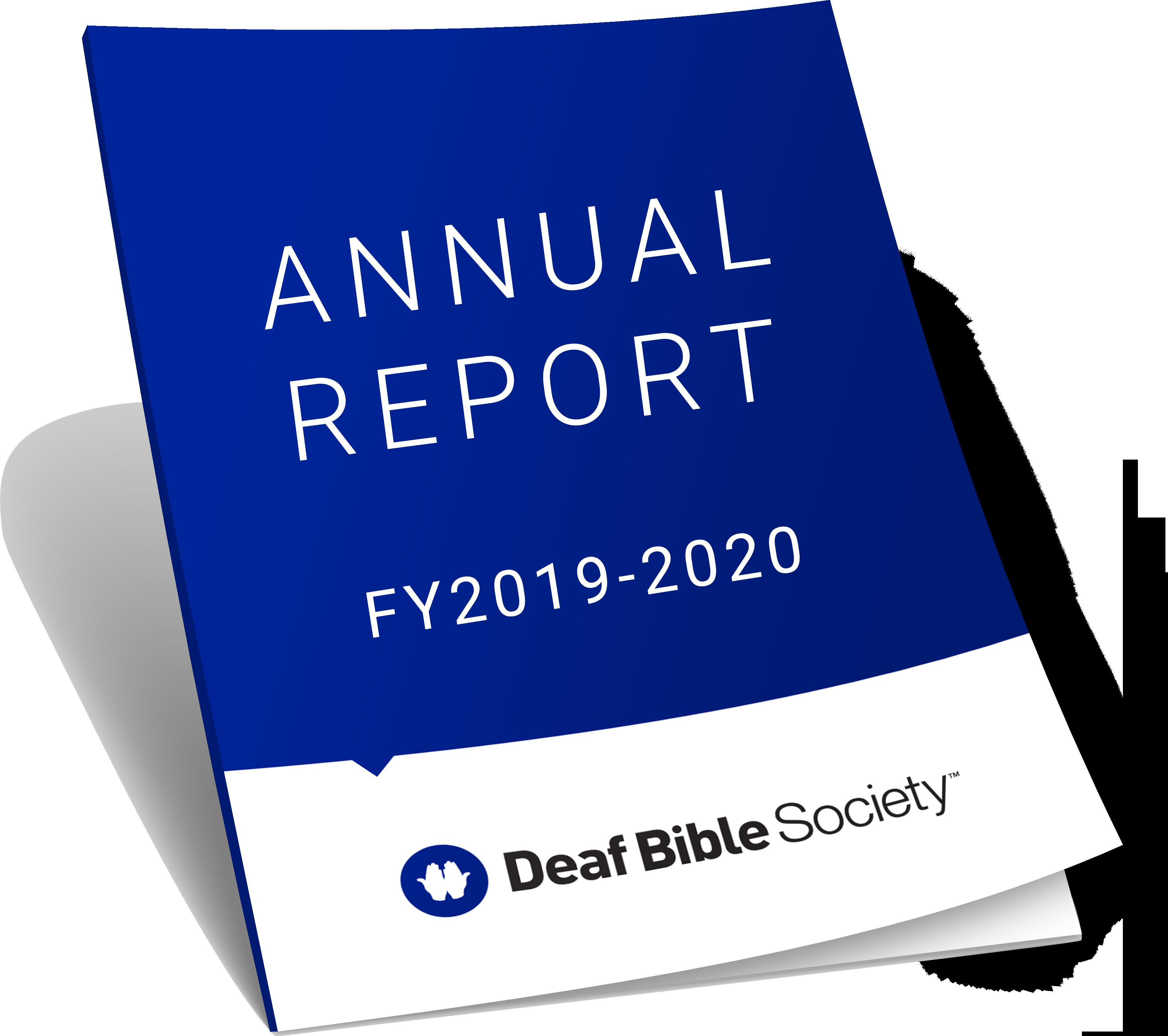 Annual Report Icon