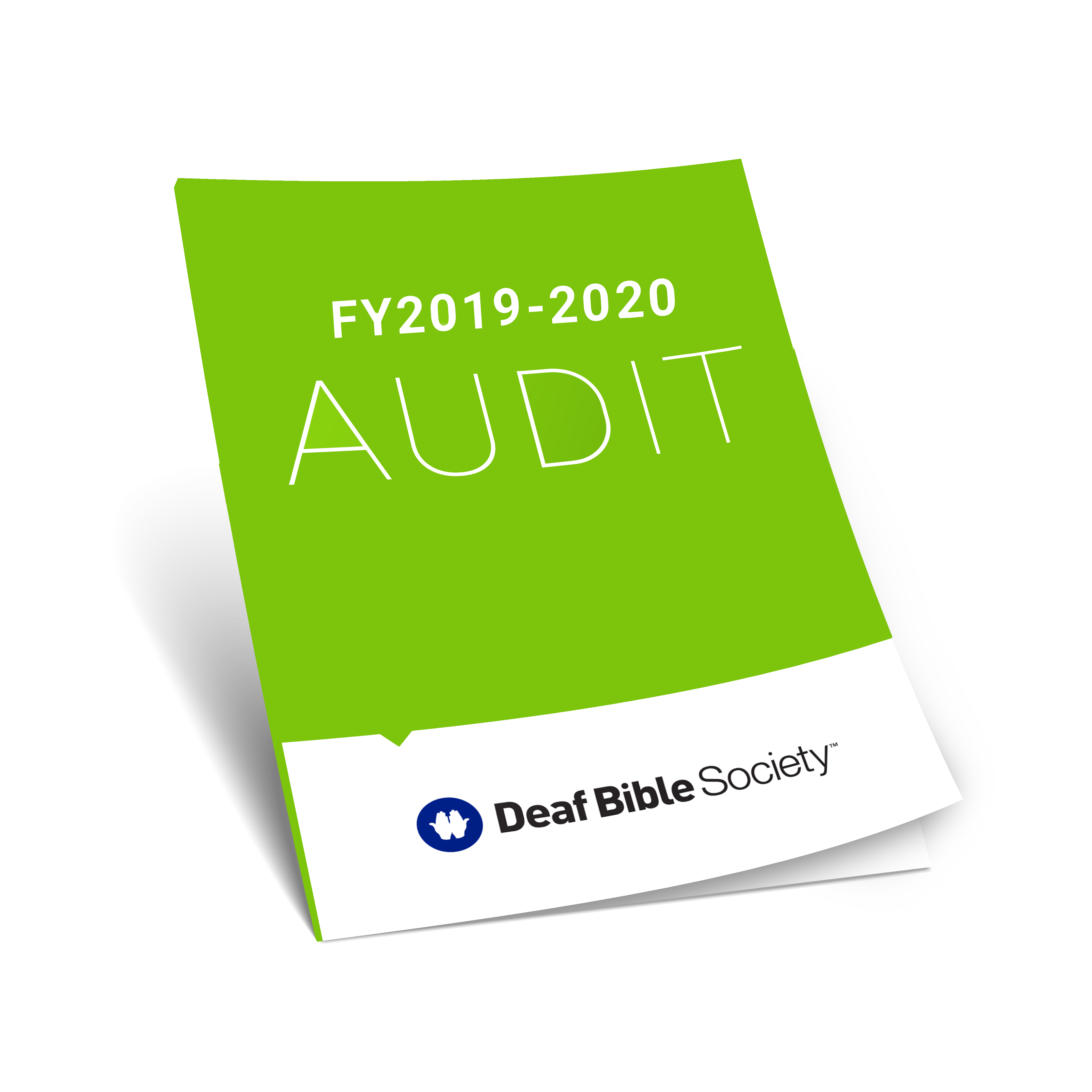 Audited Financials Icon